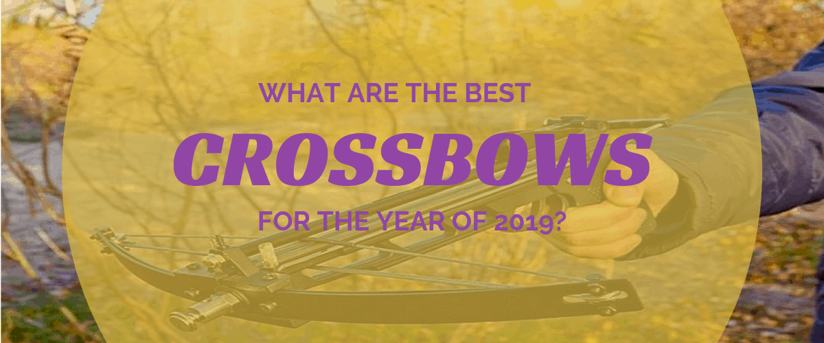 What are the Best Crossbows for the Year of 2019?
